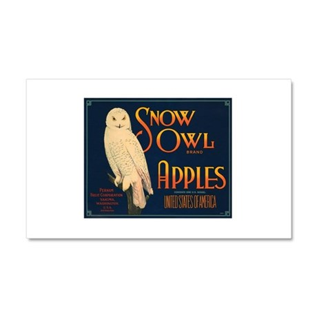 037snow owl apples.png Car Magnet 20 x 12