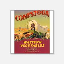 "031conestoga vegetables.png Square Sticker 3"" x 3"""