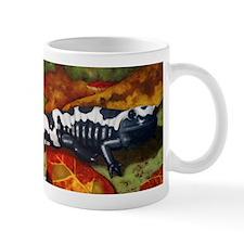 MarbledSalamander.png Mug