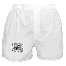 Raccoon Pen & Ink Boxer Shorts white