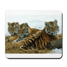 TIGER CUBS Mousepad