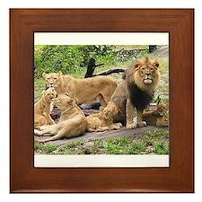 LION FAMILY Framed Tile