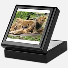 LION FAMILY Keepsake Box