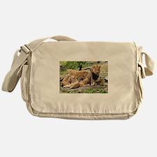 LION FAMILY Messenger Bag