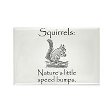 Squirrel Speed Bump Rectangle Magnet (10 pack)