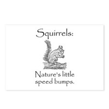 Squirrel Speed Bump Postcards (Package of 8)