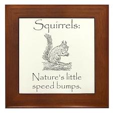 Squirrel Speed Bump Framed Tile