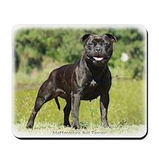Staffordshire Bull Terrier 9R018D-024_2 Mousepad