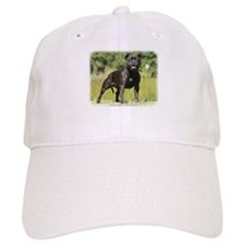 Staffordshire Bull Terrier 9R018D-024_2 Baseball Cap