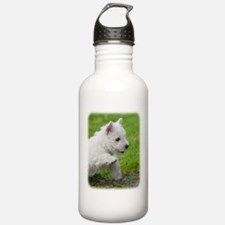 West Highland White Terrier AA060D-020 Sports Water Bottle
