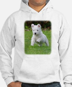 West Highland White Terrier AA060D-030 Hoodie