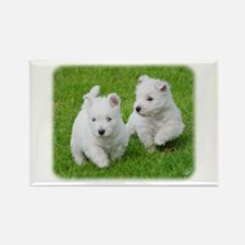 West Highland White Terrier AA060D-024 Rectangle M