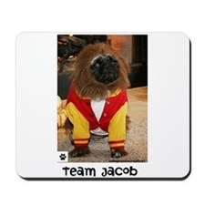 Team Jacob- Mousepad