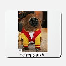Team Jacob- Mousepad