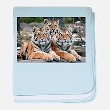 TIGERS baby blanket