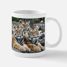 TIGERS Mug