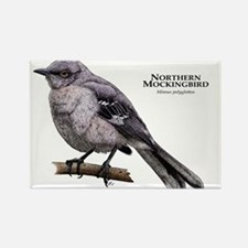 Northern Mockingbird Rectangle Magnet