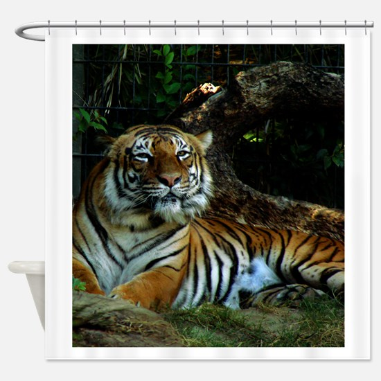A Happy Indochinese Tiger Shower Curtain