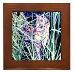 Colorful Cat Framed Tile