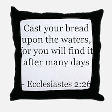 Ecclesiastes 2:26 Throw Pillow