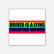 driveriswhore Sticker
