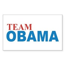 Team OBAMA 2012 Decal