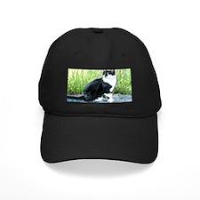 Louie the Tuxedo Cat Baseball Hat
