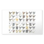48 Hens Promo Sticker (Rectangle 50 pk)