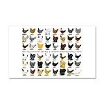 48 Hens Promo Car Magnet 20 x 12