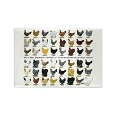48 Hens Promo Rectangle Magnet