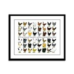 48 Hens Promo Framed Panel Print