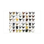 48 Hens Promo 38.5 x 24.5 Wall Peel