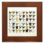 48 Hens Promo Framed Tile