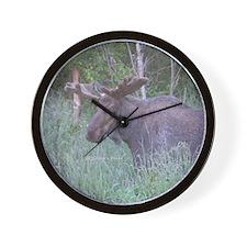 P6270007 Bull #04 Wall Clock