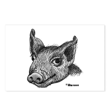 Potbelly Pig Postcards (Package of 8)