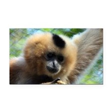 Golden-Cheeked Gibbon eatting 9 Rectangle Car Magn