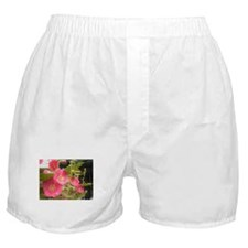 Pink (Lady) Hollyhock Flower Boxer Shorts