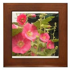 Pink (Lady) Hollyhock Flower Framed Tile