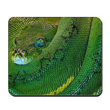 Snake Eyes Mousepad
