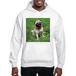 Cute Pug Hooded Sweatshirt