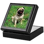 Cute Pug Keepsake Box