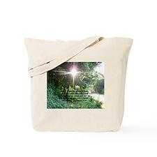 Sunbeam of Hope/Scripture Tote Bag