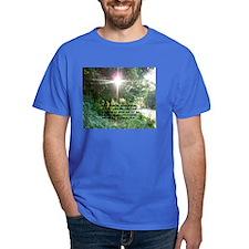 Sunbeam of Hope/Scripture T-Shirt