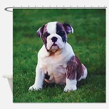 Cute Bulldog Shower Curtain