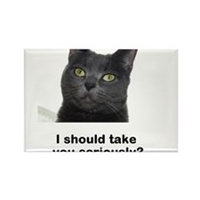 Seriously Blue Cat Rectangle Magnet