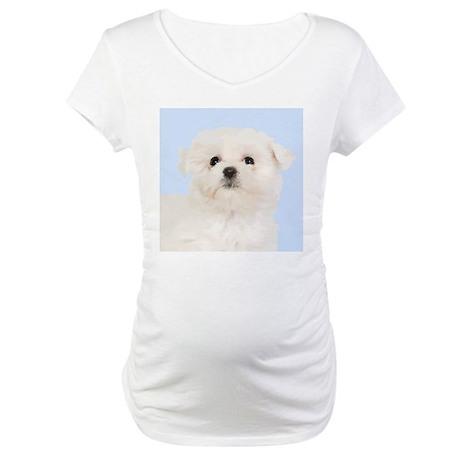 Cute Maltese Maternity T-Shirt