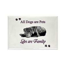 Labs are Family Rectangle Magnet