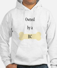Owned by a BC Hoodie