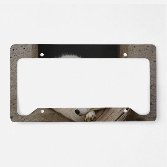 Sleeping corner License Plate Holder