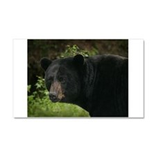 Black Bear Car Magnet 20 x 12